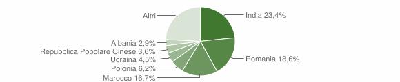 Grafico cittadinanza stranieri - Venafro 2019