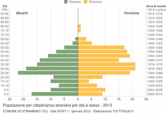 Grafico cittadini stranieri - Strambino 2013
