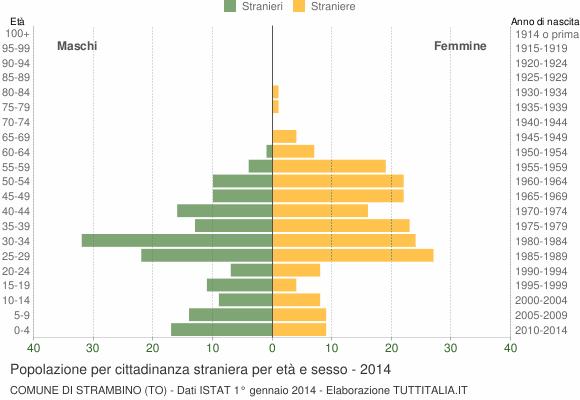 Grafico cittadini stranieri - Strambino 2014