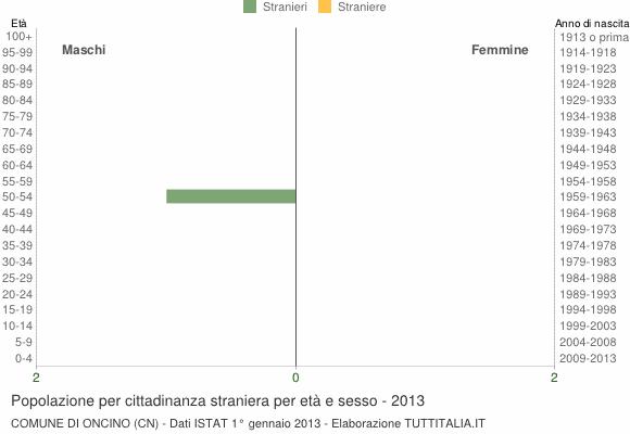 Grafico cittadini stranieri - Oncino 2013
