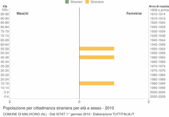 Grafico cittadini stranieri - Malvicino 2010