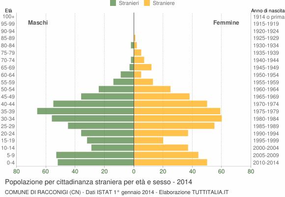 Grafico cittadini stranieri - Racconigi 2014