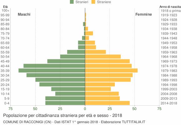 Grafico cittadini stranieri - Racconigi 2018