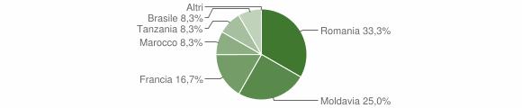 Grafico cittadinanza stranieri - Melle 2013