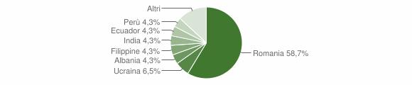 Grafico cittadinanza stranieri - Salussola 2014