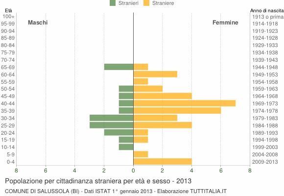 Grafico cittadini stranieri - Salussola 2013