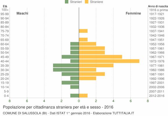 Grafico cittadini stranieri - Salussola 2016