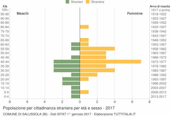 Grafico cittadini stranieri - Salussola 2017