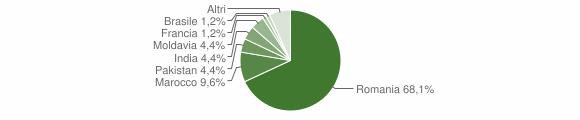 Grafico cittadinanza stranieri - Vigone 2017