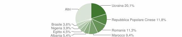 Grafico cittadinanza stranieri - Domodossola 2019