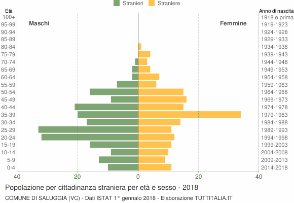 Grafico cittadini stranieri - Saluggia 2018