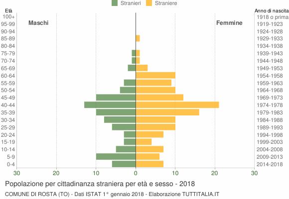Grafico cittadini stranieri - Rosta 2018