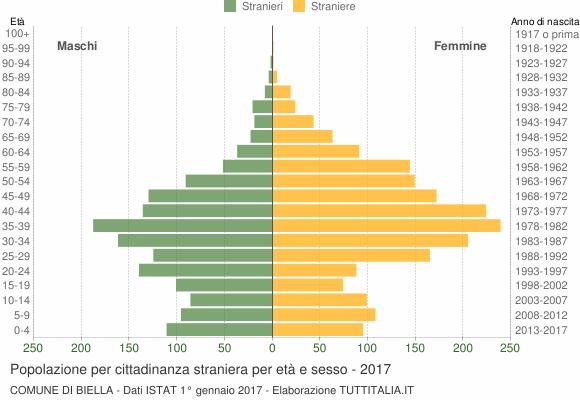 Grafico cittadini stranieri - Biella 2017