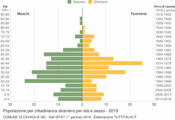 Grafico cittadini stranieri - Cavaglià 2019