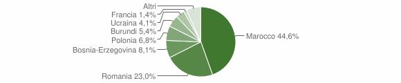 Grafico cittadinanza stranieri - Strona 2010