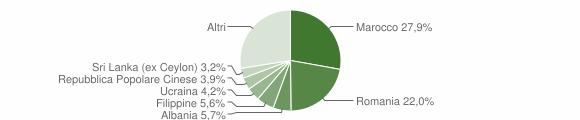 Grafico cittadinanza stranieri - 2015