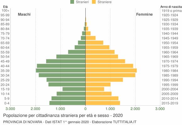 Grafico cittadini stranieri - 2020