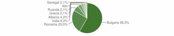 Grafico cittadinanza stranieri - Castri di Lecce 2013