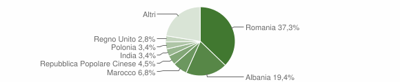 Grafico cittadinanza stranieri - Galatina 2015