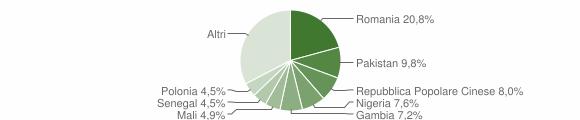 Grafico cittadinanza stranieri - Squinzano 2019