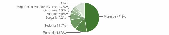 Grafico cittadinanza stranieri - Veglie 2010