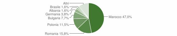 Grafico cittadinanza stranieri - Veglie 2011