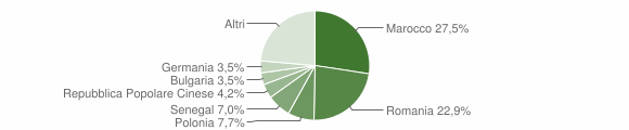 Grafico cittadinanza stranieri - Veglie 2017
