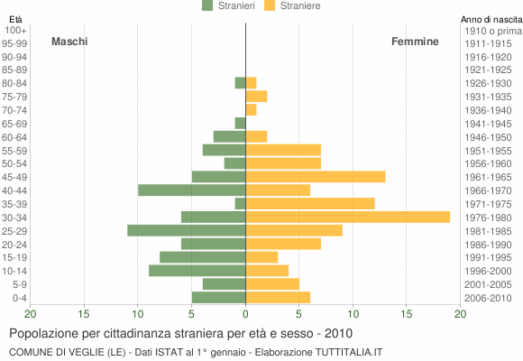 Grafico cittadini stranieri - Veglie 2010