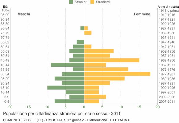 Grafico cittadini stranieri - Veglie 2011