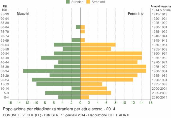 Grafico cittadini stranieri - Veglie 2014