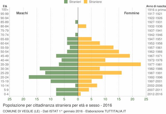 Grafico cittadini stranieri - Veglie 2016
