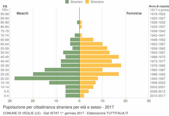 Grafico cittadini stranieri - Veglie 2017