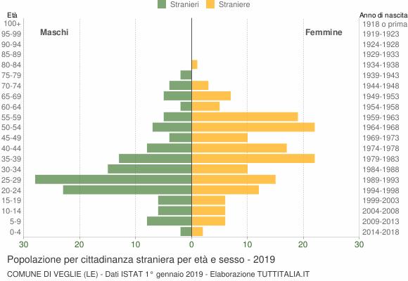 Grafico cittadini stranieri - Veglie 2019