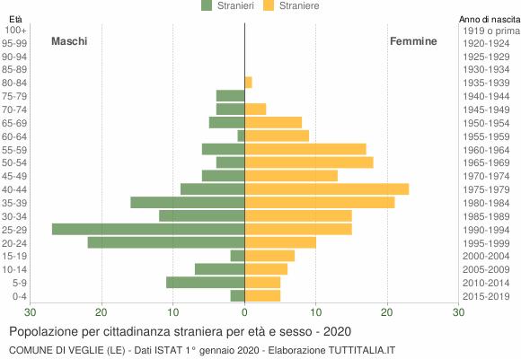 Grafico cittadini stranieri - Veglie 2020