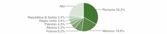 Grafico cittadinanza stranieri - Galatone 2013