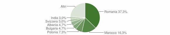Grafico cittadinanza stranieri - Galatone 2015