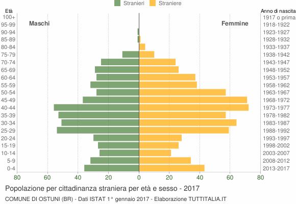 Grafico cittadini stranieri - Ostuni 2017