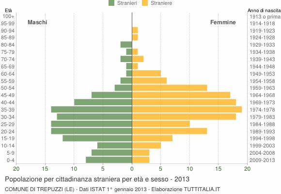 Grafico cittadini stranieri - Trepuzzi 2013