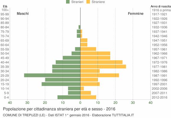 Grafico cittadini stranieri - Trepuzzi 2016