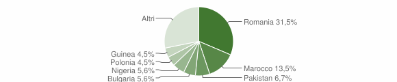 Grafico cittadinanza stranieri - Neviano 2019