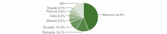 Grafico cittadinanza stranieri - Salice Salentino 2011