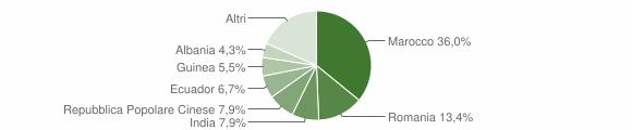 Grafico cittadinanza stranieri - Salice Salentino 2019