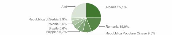 Grafico cittadinanza stranieri - Maglie 2009