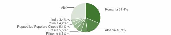 Grafico cittadinanza stranieri - Maglie 2013