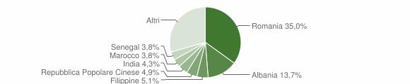 Grafico cittadinanza stranieri - Maglie 2019