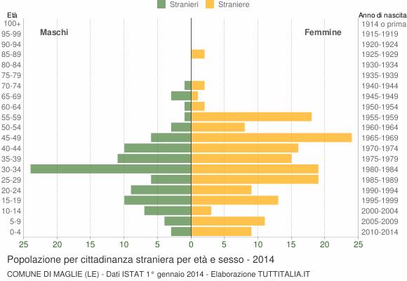 Grafico cittadini stranieri - Maglie 2014
