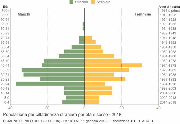 Grafico cittadini stranieri - Palo del Colle 2018