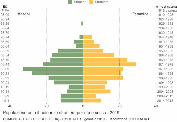 Grafico cittadini stranieri - Palo del Colle 2019