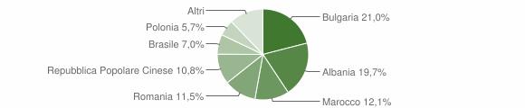 Grafico cittadinanza stranieri - Carmiano 2011