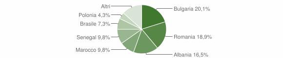 Grafico cittadinanza stranieri - Carmiano 2013